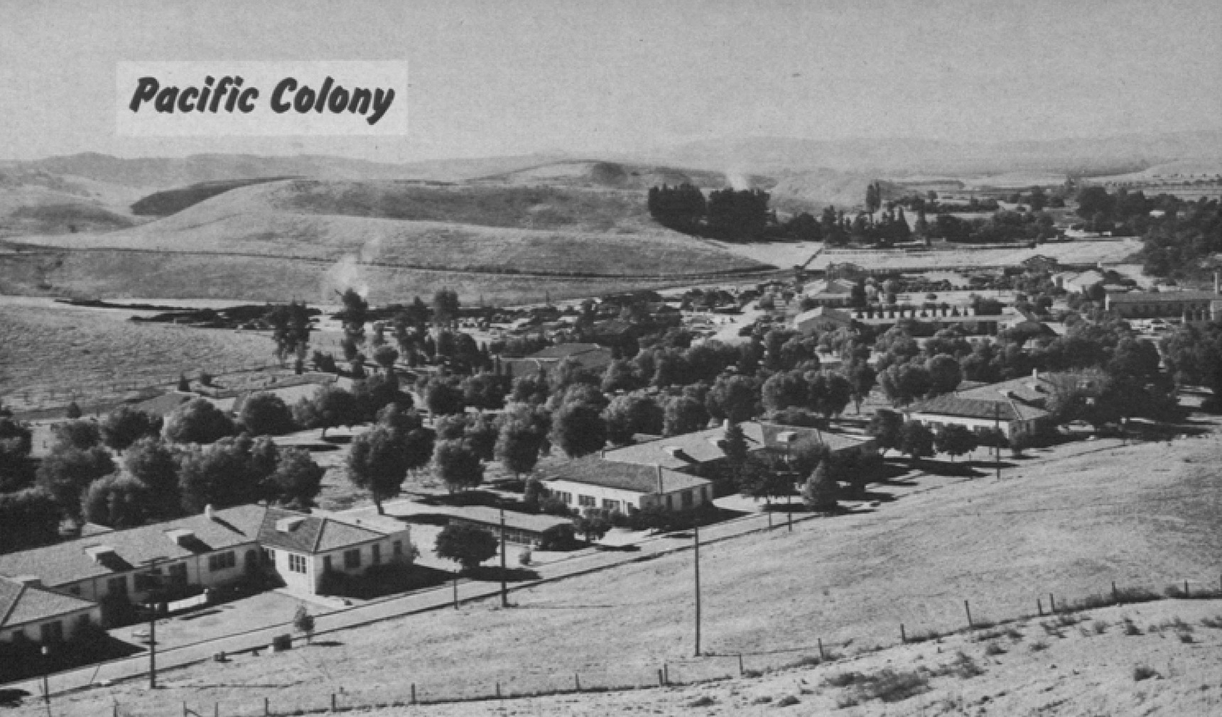 Pacific Colony, located at Spadra, California. Image published in the Biennial Report for 1950-1952 by State of California Department of Mental Hygiene and provided by Alex Wellerstein.