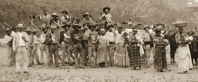 """Enlargement and detail of """"Departure for the coffee harvest by ox cart, Vale do Paraíba, Brazil, c. 1885″"""